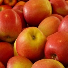 APPLES RED - 1.5KG