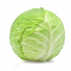 CABBAGE WHOLE - EACH